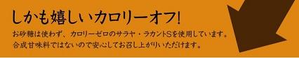 copy_02[1]