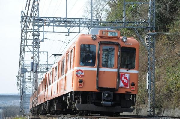 DSC_3841.jpg