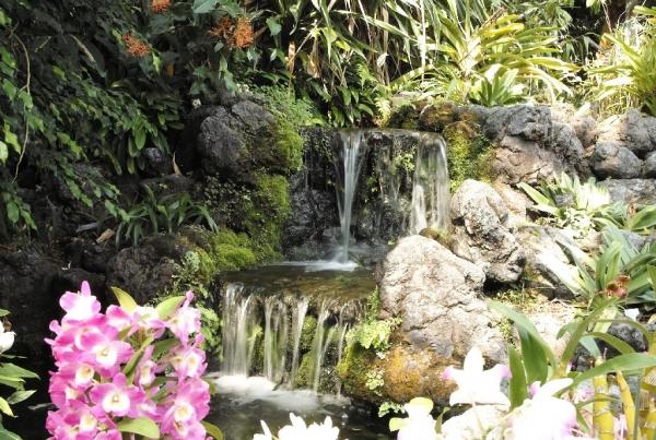 京都府植物園