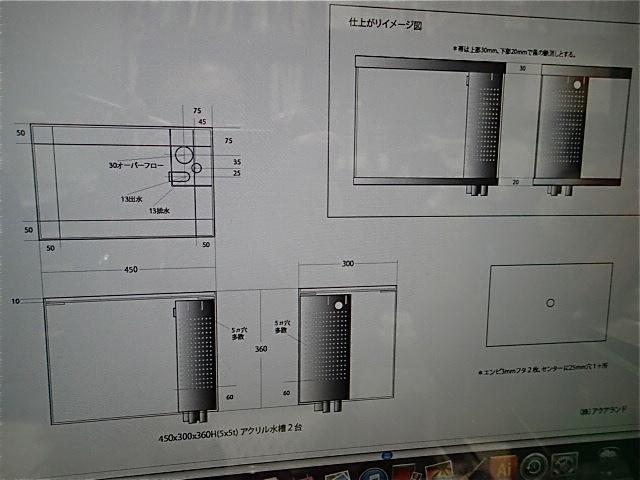 P2290015.jpg