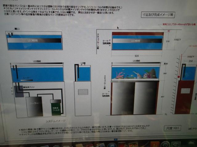 P3230054.jpg