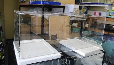 水槽0226
