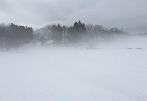 2016-02-14霧