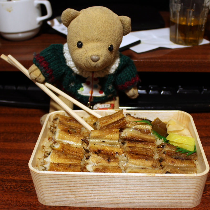 うえの「穴子飯」弁当を食べるくまちゃん 160107