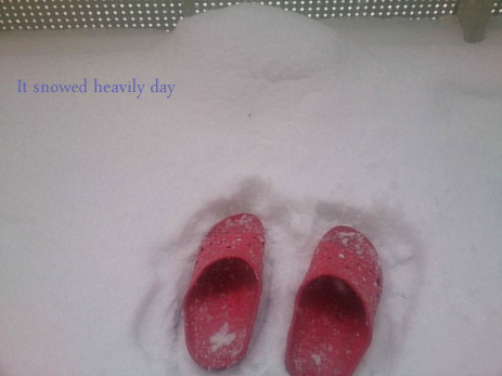 雪2のコピー