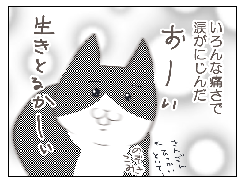 20160226-5.png