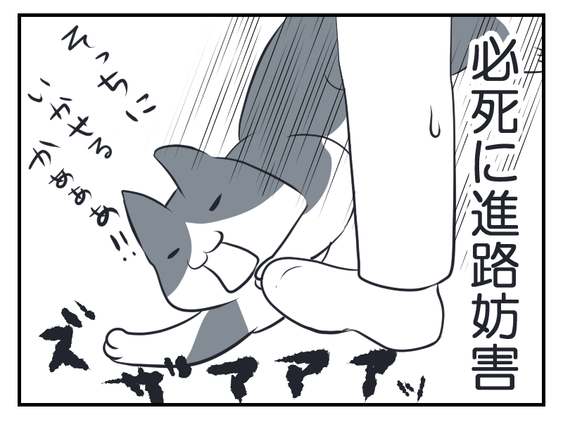 20160301-3.png