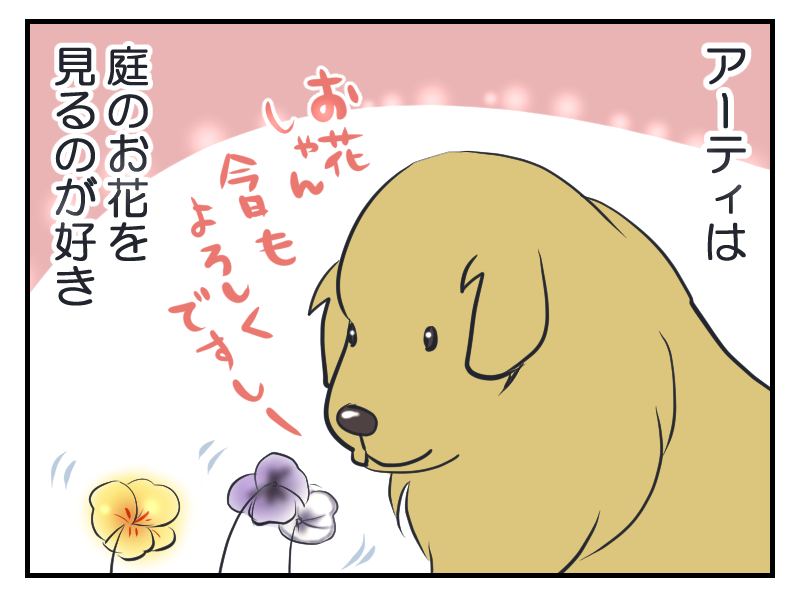 20160304-2.png