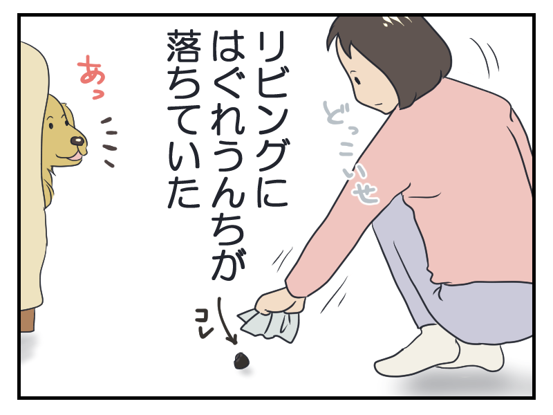 20160317-1.png