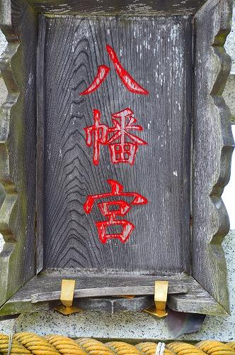 川DSC_0465