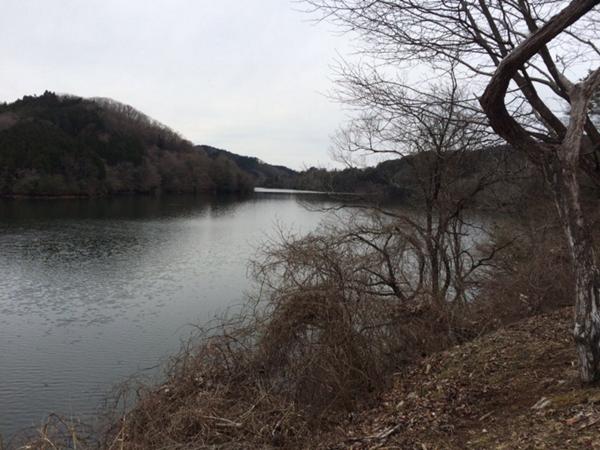 21回三河湖マラソン3