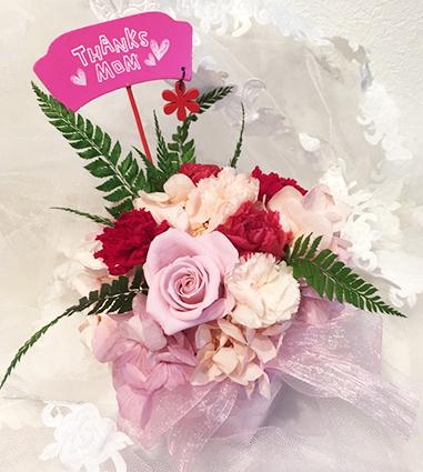 2016年一番人気の花