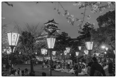 20160402-高知城-光と花-1