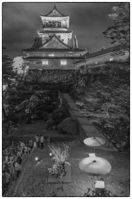 20160402-高知城-光と花-3