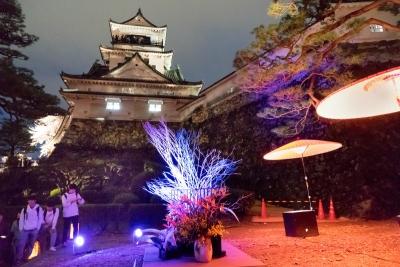 20160402-高知城-光と花-4