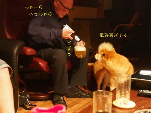 ビール飲みすぎアドパパ