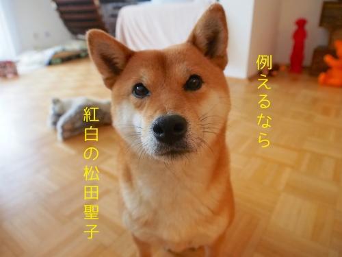 例えるなら紅白の松田聖子