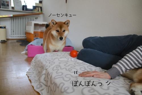 新ベッドノーセンキュー