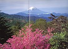 笹子峠富士遠望