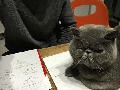 ぼくも勉強中