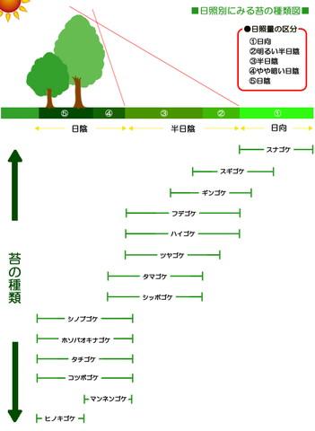 日照別に見る苔の種類図