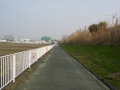 160227川沿いの自転車道を行く