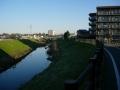 160312秋篠川に沿って進む
