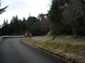 160402金勝山登坂、突き当りのT字を鋭角に右へ