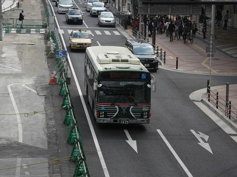 os-zebrabus-2.jpg