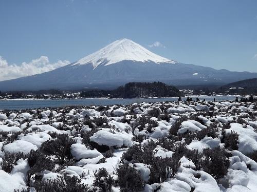 DSCF3038 大石から富士