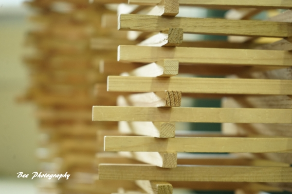 bee-木育フェス0623