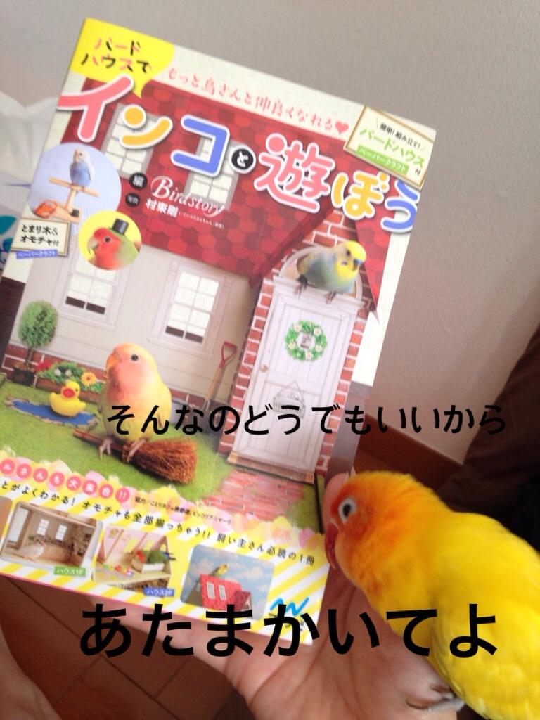fc2blog_20151221194624262.jpg