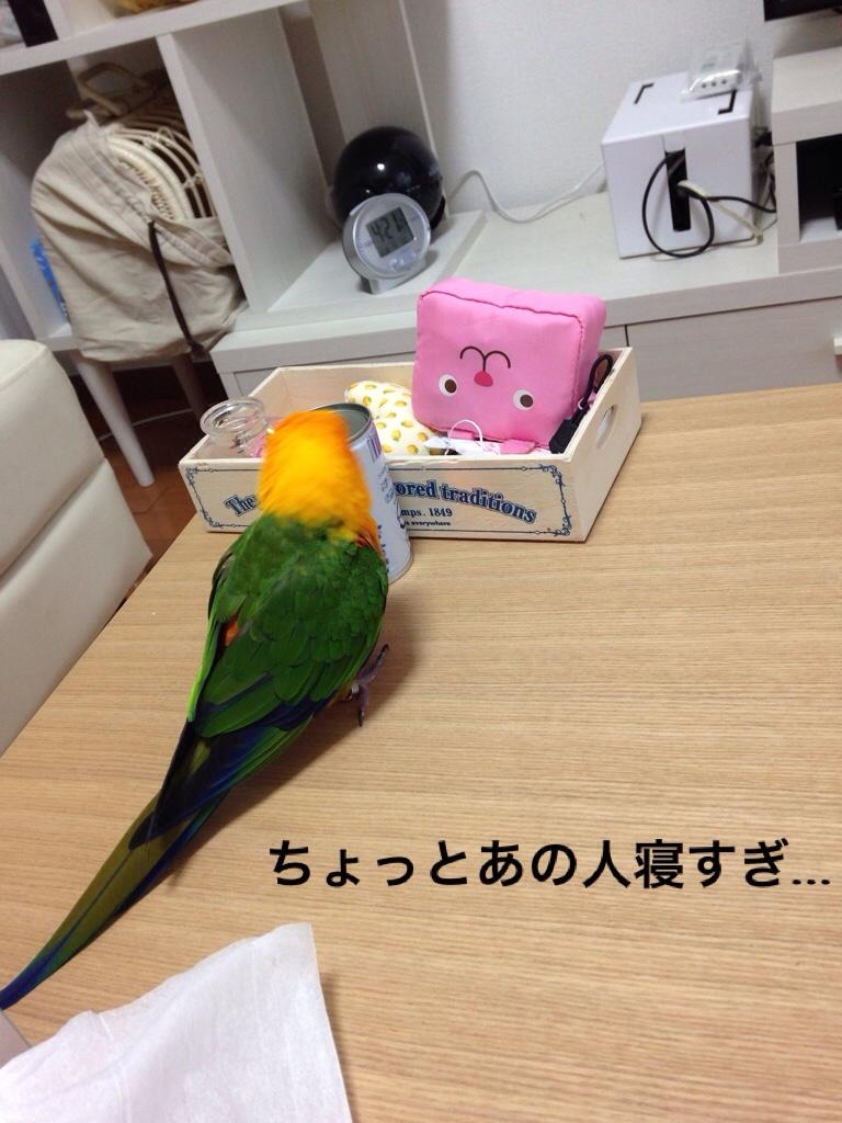 fc2blog_2015122819522055c.jpg