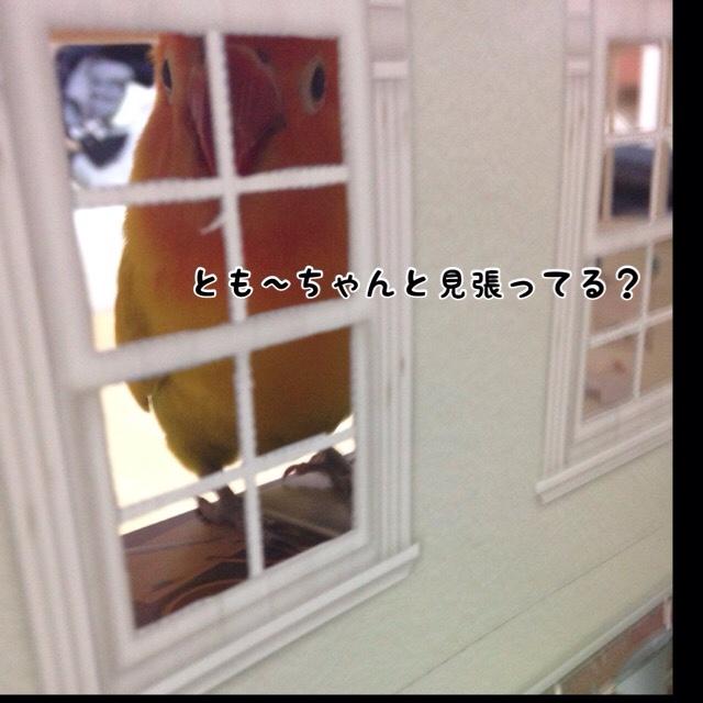 fc2blog_20160109161445aab.jpg