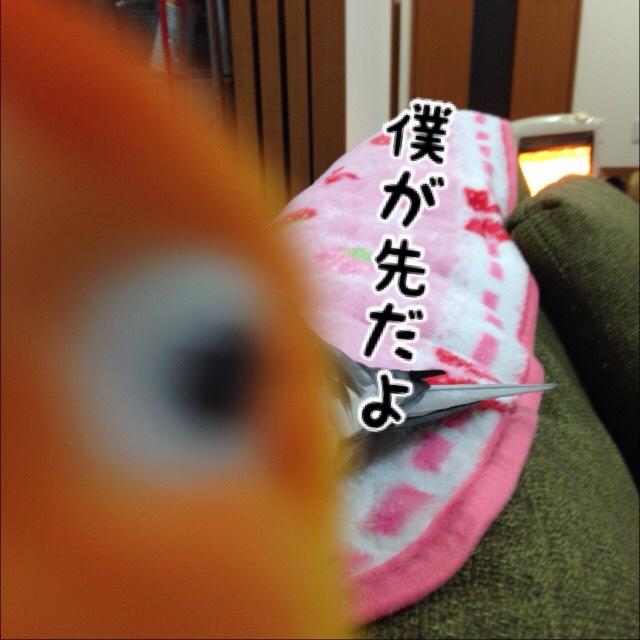 fc2blog_20160121112500aec.jpg