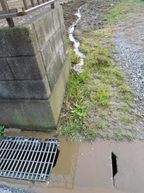 DSCN1502水路