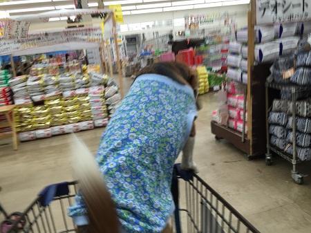 20151211びいすけと買い物19