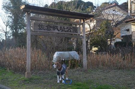 20151228佐倉城址公園03