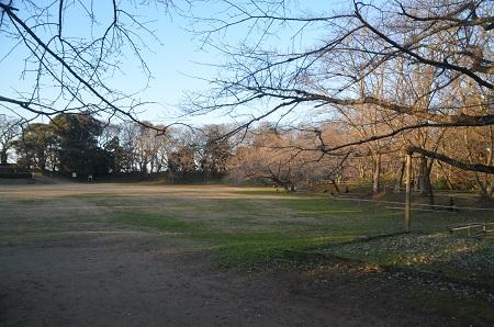 20151228佐倉城址公園26