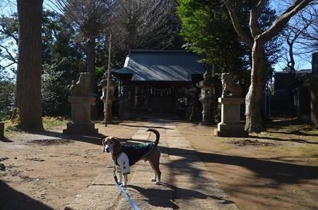 20160101初詣@弥勒町八幡神社06