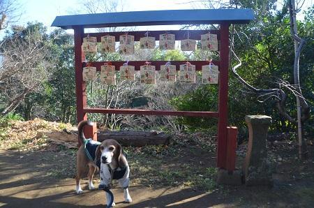 20160101初詣@弥勒町八幡神社12