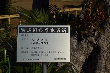 20160101習志野七福神②西光寺07