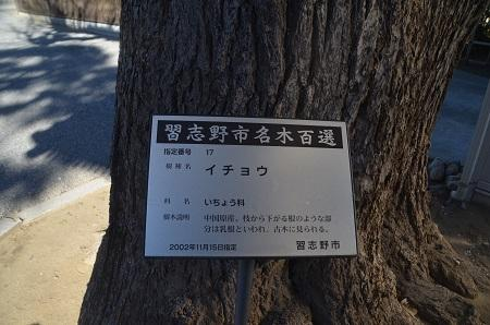 20160101習志野七福神③東漸寺05