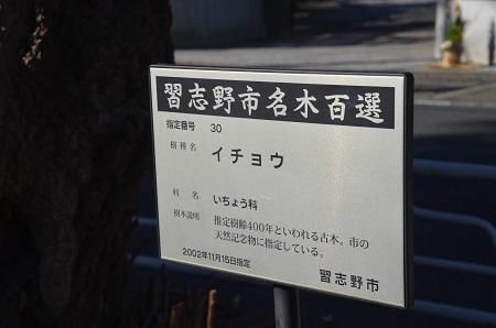 20160101習志野七福神⑤正福寺10