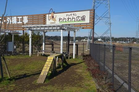 20160120カインズ佐倉ドッグラン02