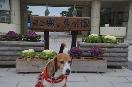 20160201城ヶ島公園01