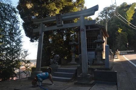 20160210妙見神社 成田・高01