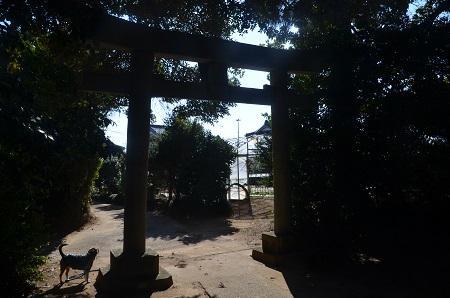 20160210妙見神社 香取・鳥羽13