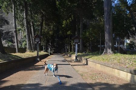 20160210佐原公園08