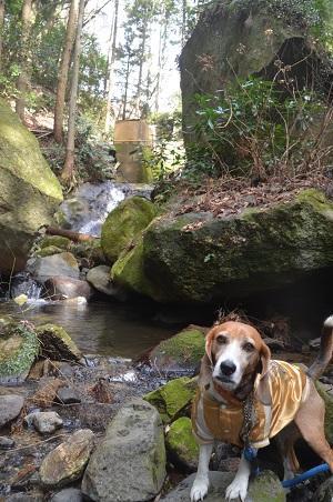 20160216六所の滝10